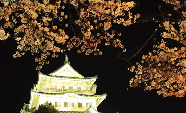 ▲千葉城と桜