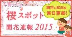桜スポット開花速報2015