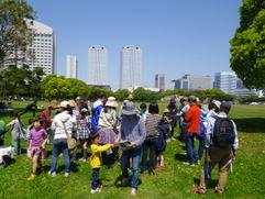 海浜幕張の初夏の身近な生き物発見!<5/31(日)>