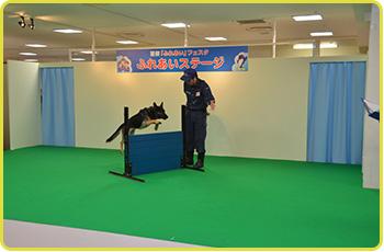 警察ふれあいフェスタ2015<8/22(土)・23(日)>