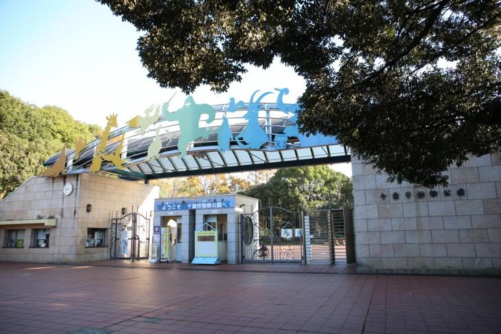 千葉市動物公園無料開放<4/28(金)>