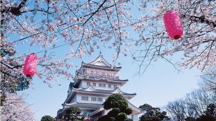 千葉常胤生誕900年記念「第17回千葉城さくら祭り」@亥鼻公園<3/29(木)~4/8(日)>