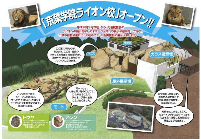 ライオン展示場「京葉学院ライオン校」オープン@千葉市動物公園<4/28(木)>