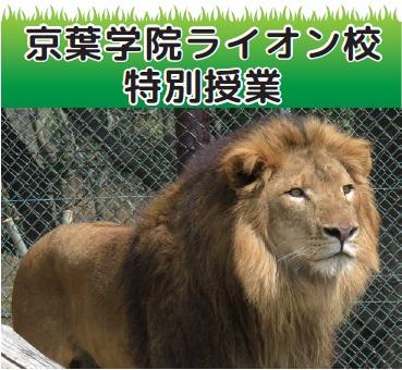 京葉学院ライオン校特別授業@千葉市動物公園<6/11(土)・18(土)>