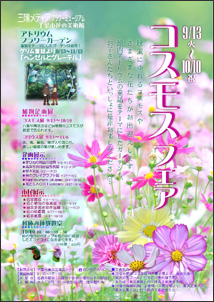 コスモスフェア@三陽メディアフラワーミュージアム<9/13(火)~10/10(月・祝)>