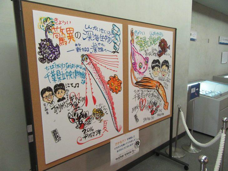 △会場には「さかなクン」が来館された際に描いて下さったイラストも展示されています。