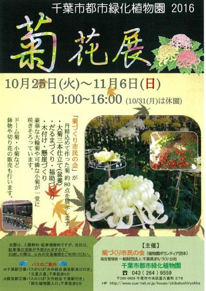 菊花展@千葉市都市緑化植物園<10/25(火)~11/6(日)>