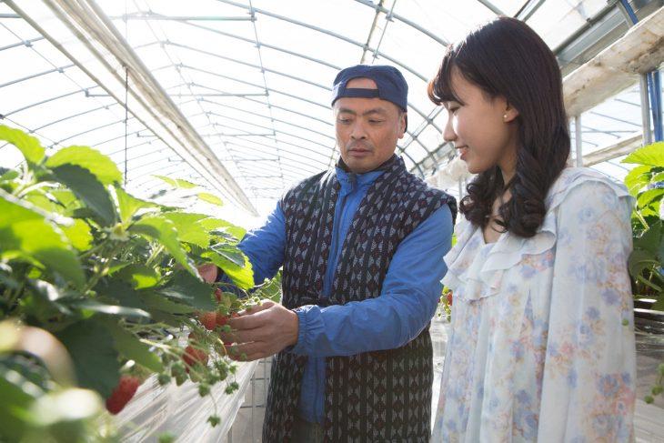 △農園スタッフから美味しいイチゴの見分け方を教わります。