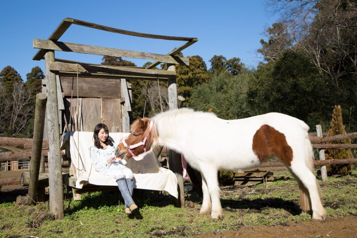 △馬主さんは、自分の馬を放牧させてこのベンチから眺めることができるそうです。メルヘンですね!