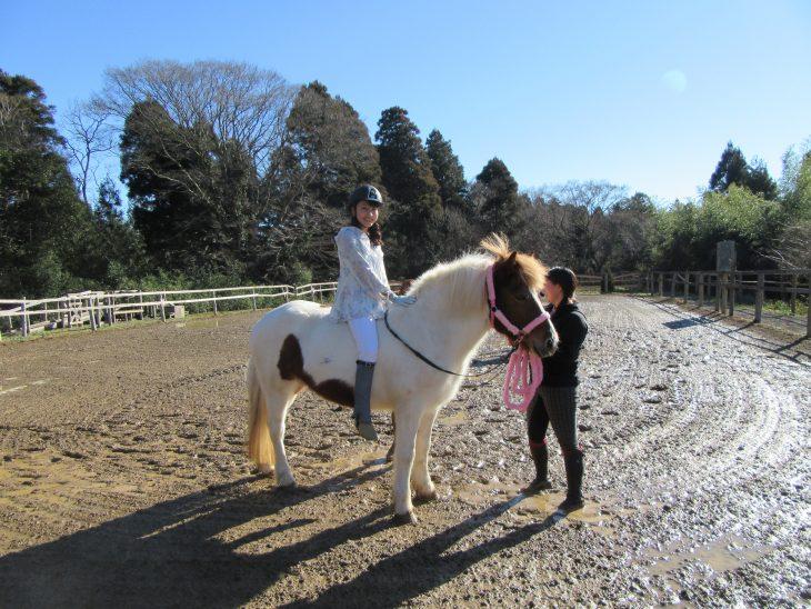 △今回乗った馬は「たわらちゃん」と言う9才のメスの馬です。