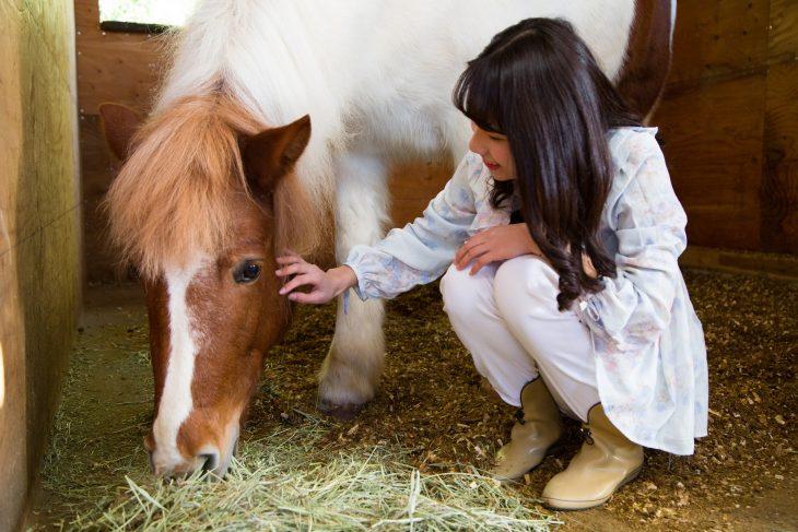 △馬と触れ合うことができたら、次は馬に乗る準備です。