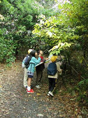 五七五で自然を切り取るー生態園を子どもの目で詠むと@県立中央博物館<3/4(土)~>