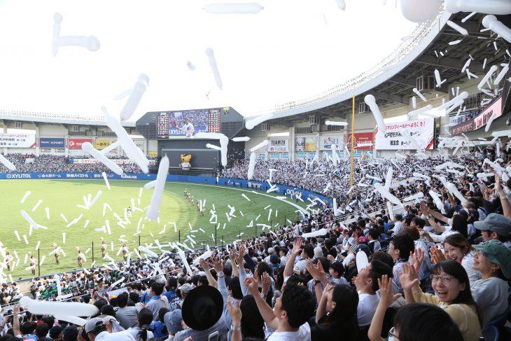 プロ野球オープン戦 千葉ロッテ 対 東京ヤクルト@ZOZOマリンスタジアム<3/14(火)>