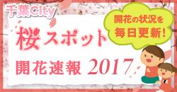 桜スポット開花速報2017