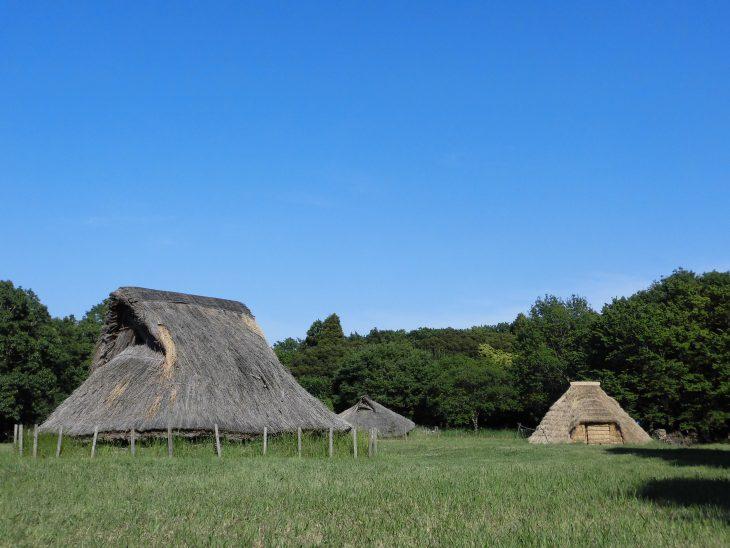 加曽利貝塚が国特別史跡に指定されました!