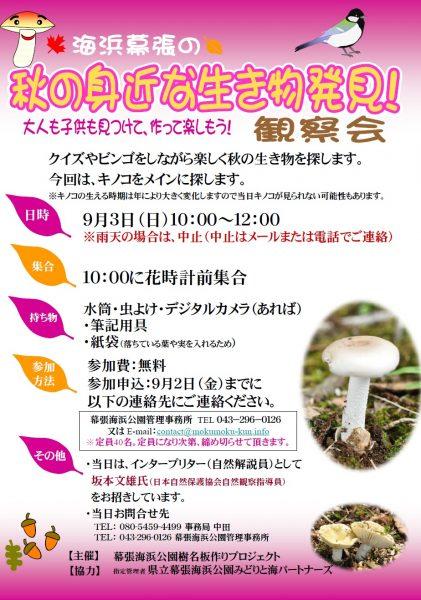 秋の身近な生き物発見!観察会@幕張海浜公園<9/3(日)>