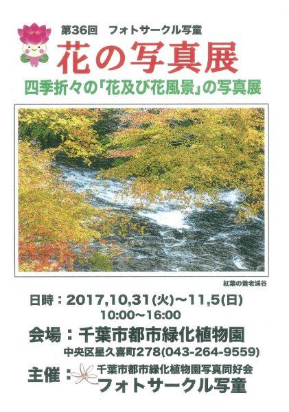 花の写真展@千葉市都市緑化植物園<10/31(火)~11/5(日)>