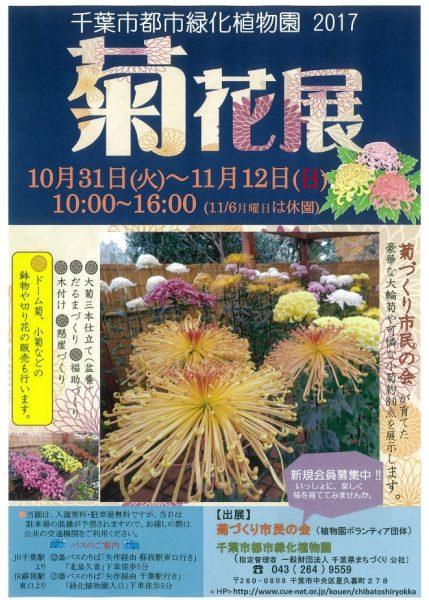 菊花展@千葉市都市緑化植物園<10/31(火)~11/12(日)>
