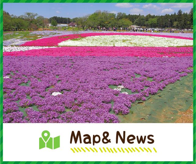 Map&News