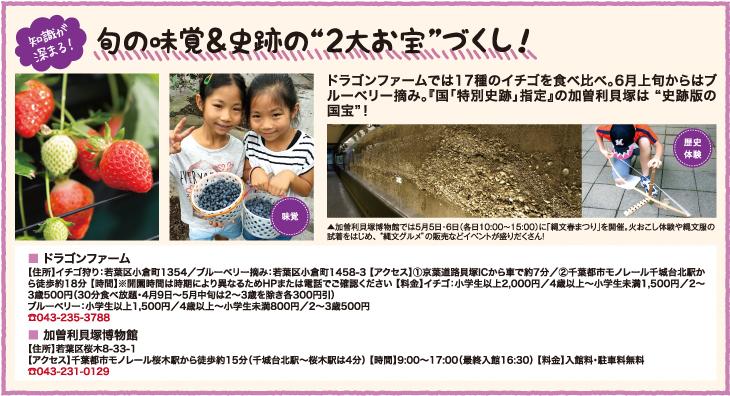 """知識が深まる! 旬の味覚&史跡の""""2大お宝""""づくし!"""