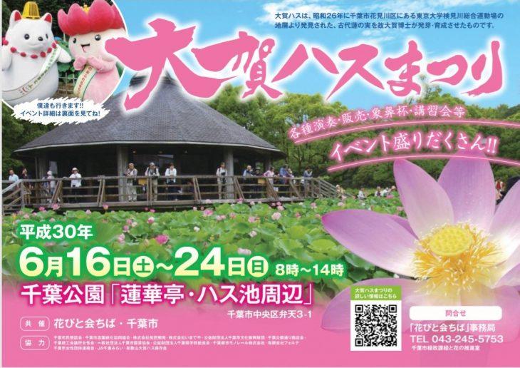 大賀ハスまつり@千葉公園<6/16(土)~24(日)>