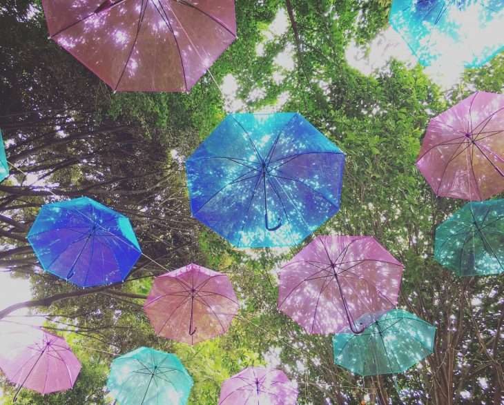 Rainy-Sunny-Rainbow 天空を彩る「傘の森」2018@椿森コムナ<6/2(土)~7/31(火)>
