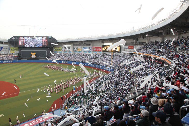 プロ野球 千葉ロッテ 対 横浜DeNA@ZOZOマリンスタジアム<6/12(火)~14(木)>