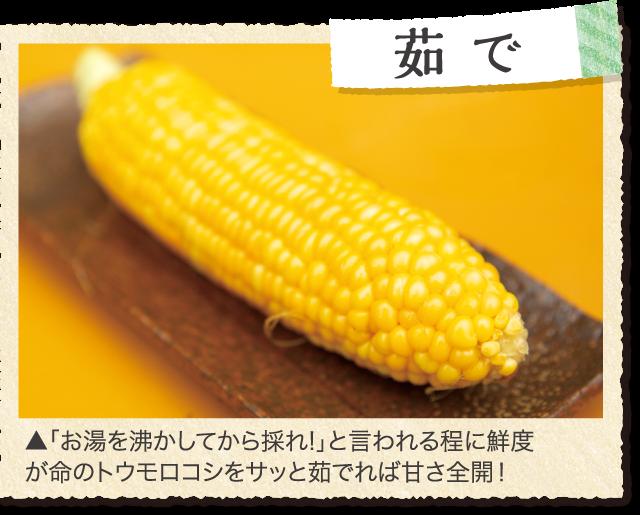 ▲「お湯を沸かしてから採れ!」と言われる程に鮮度が命のトウモロコシをサッと茹でれば甘さ全開!