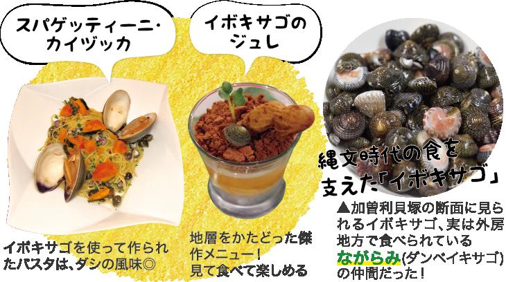 縄文時代の食を支えた「イボキサゴ」