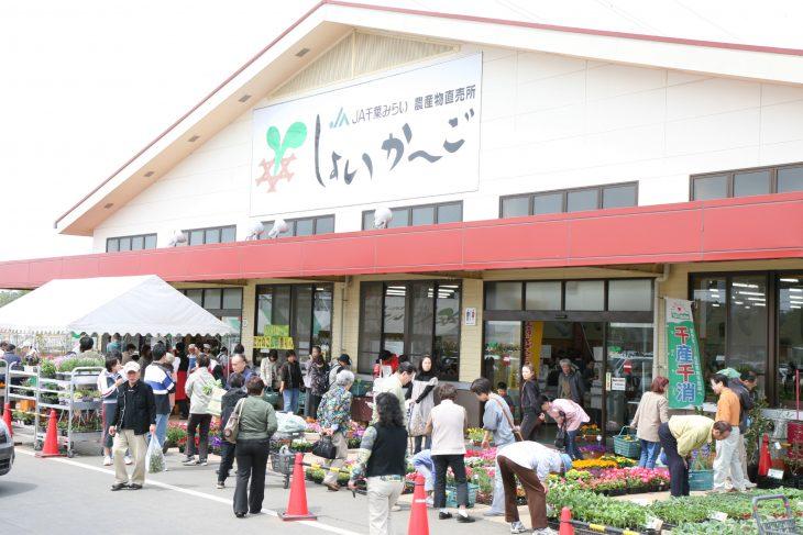 千葉市内「農産物直売所」営業状況