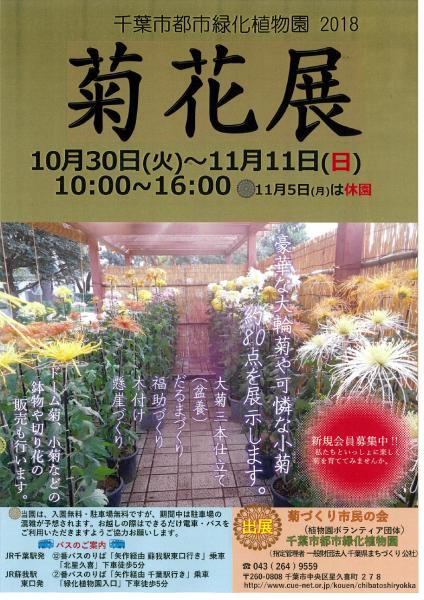 菊花展@千葉市都市緑化植物園<10/30(火)~11/11(日)>