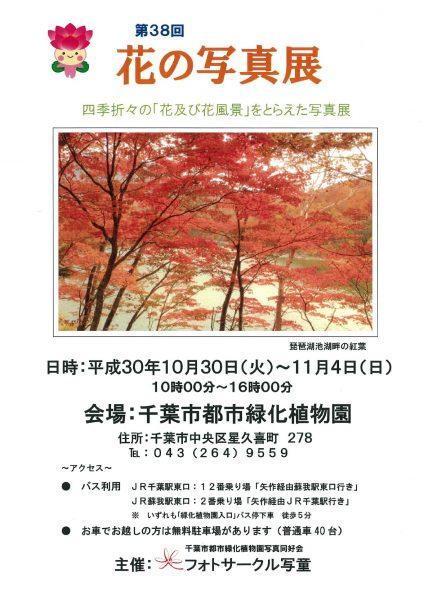 花の写真展@千葉市都市緑化植物園<10/30(火)~11/4(日)>