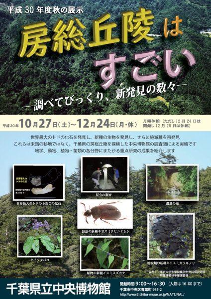 秋の展示「房総丘陵はすごい―調べてびっくり、新発見の数々―」@県立中央博物館<10/27(土)~12/24(月・休)>