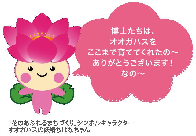 「花のあふれるまちづくり」シンボルキャラクターオオガハスの妖精ちはなちゃん