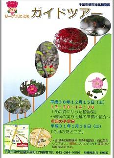 園内ガイドツアー @千葉市都市緑化植物園<12/15(土)・1/19(土)>