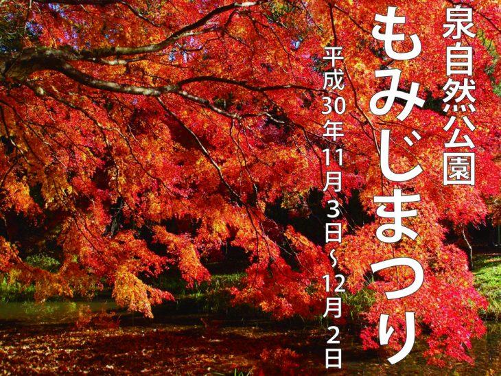 もみじまつり@泉自然公園<11/3(土)~12/2(日)>