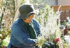 花と緑の人気講座!11月開催@幕張海浜公園<11/25(日)>