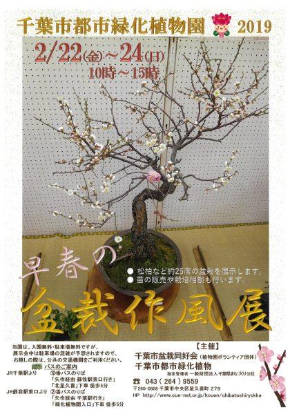 早春の盆栽作風展@千葉市都市緑化植物園<2/22(金)~24(日)>