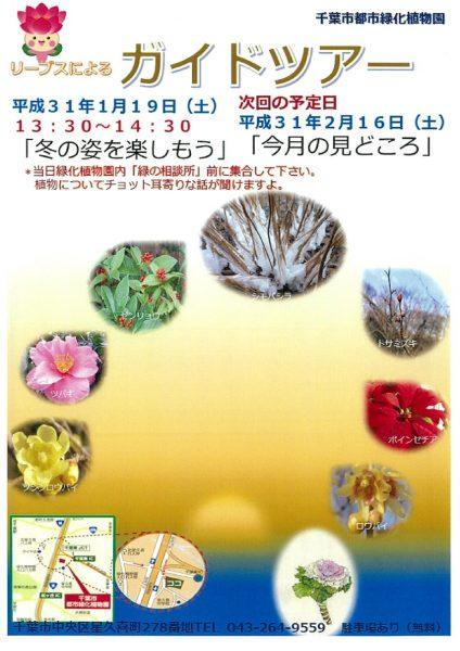 園内ガイドツアー @千葉市都市緑化植物園<1/19(土)>