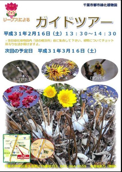園内ガイドツアー @千葉市都市緑化植物園<2/16(土)>