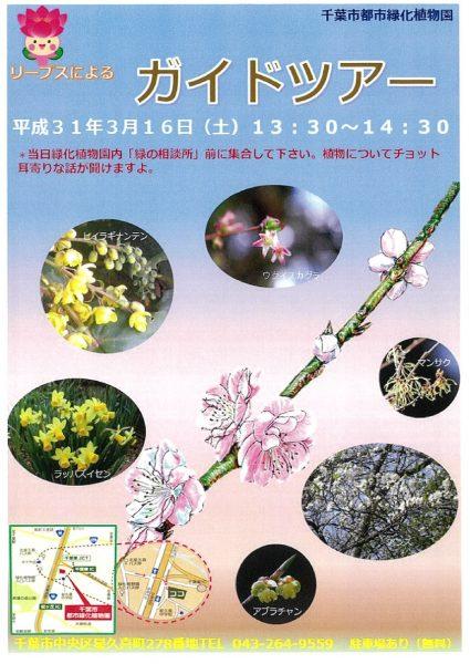 園内ガイドツアー@千葉市都市緑化植物園<3/16(土)>