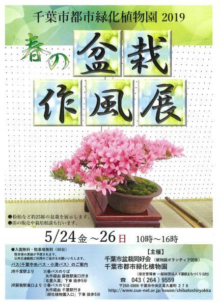 春の盆栽作風展@千葉市都市緑化植物園<5/24(金)~26(日)>