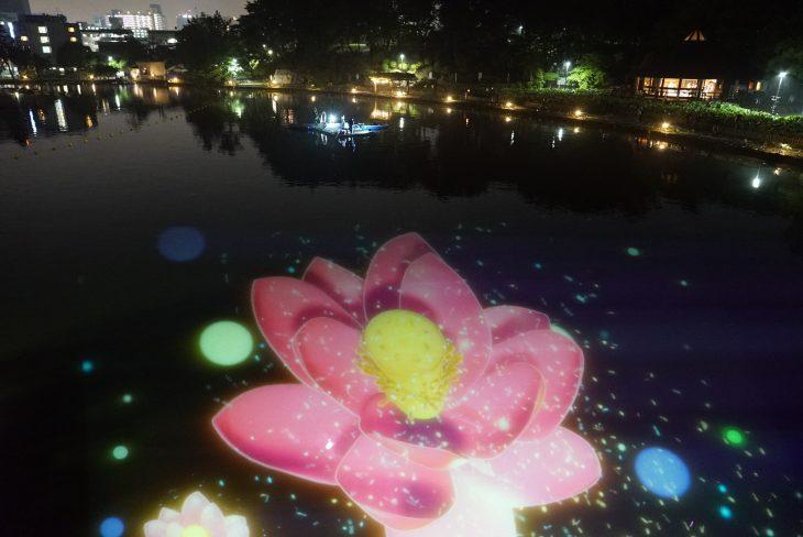 YohaS(夜ハス)2019@千葉公園<6/1(土)~8(土)>