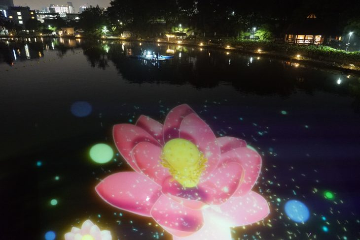 ~YohaS(夜ハス)2019~@千葉公園<前夜祭6/1(土)~7(金)・本祭8(日)>