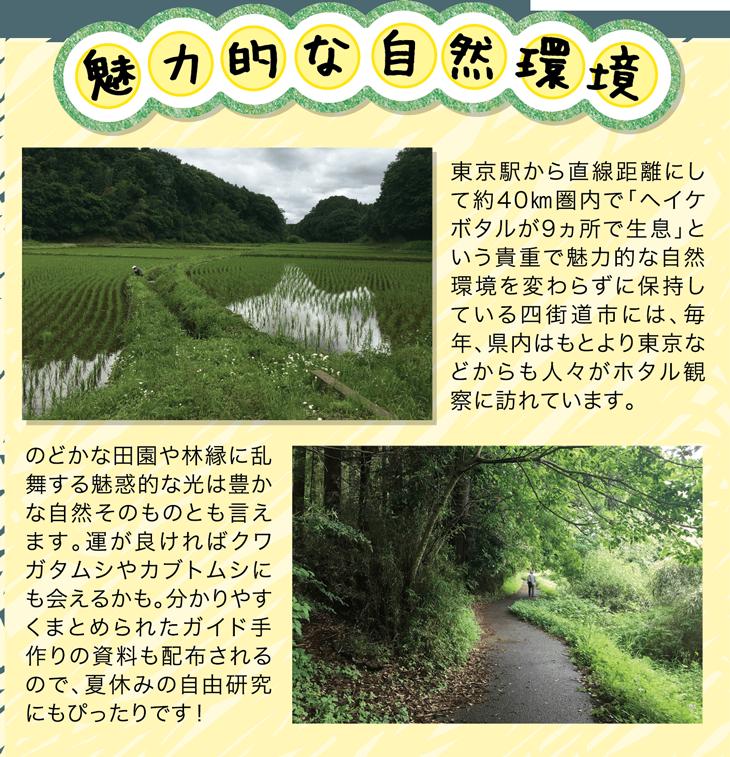 魅力的な自然環境