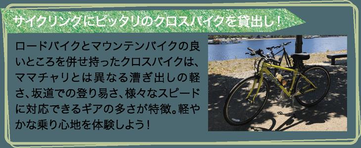 サイクリングにピッタリのクロスバイクを貸出し!