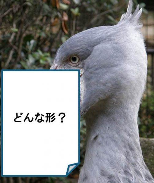 ずーろじラボ@千葉市動物公園<7/22(月)・23(火)>
