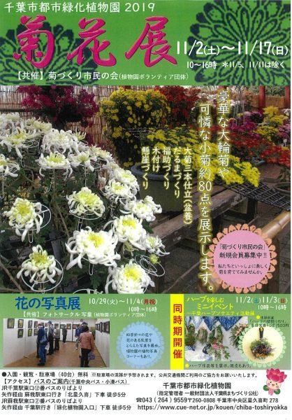 菊花展@千葉市都市緑化植物園<11/2(土)~11/17(日)>