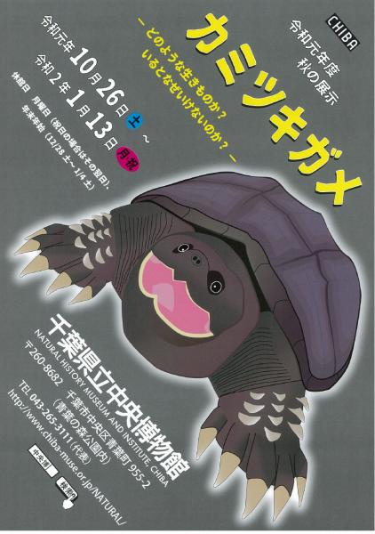 秋の展示「カミツキガメ~どのような生きものか?いるとなぜいけないのか?~」@県立中央博物館<10/26(土)~1/13(月・祝日)>