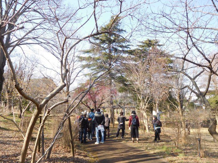 園内ガイドツアー@千葉市都市緑化植物園<2/15(土)・3/21(土)>